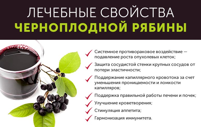 как-то, черноплодная рябина полезные свойства и противопоказания желающих