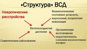 Структура ВСД