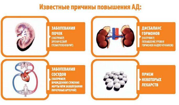 Какие причины высокого артериального давления?