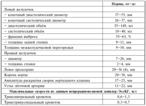 Нормы эхокардиограммы