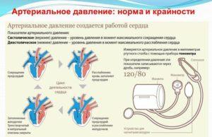 Артериальное давление: норма и отклонение